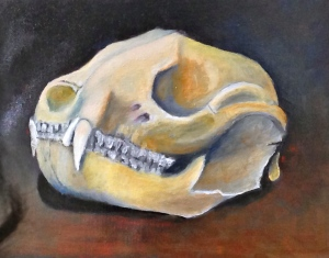 Badger skull, first color pass in oil.
