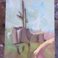 Sweetwater Trail, Saguaro Nat'l Park